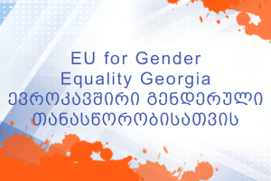 The Commission on Gender Equality, Violence against Women and Domestic Violence