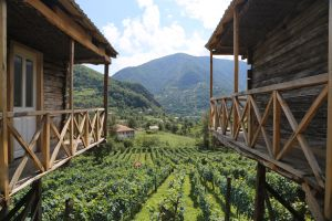 Family Wine Cellar and Guesthouse in Village of Pirveli Maisi